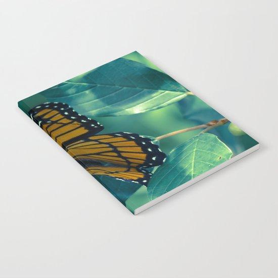 Viceroy Notebook