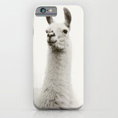 White Llama Photograph Slim Case iPhone 6