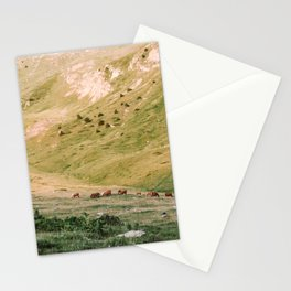Stallions & Mares in the Valley Stationery Cards