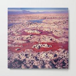 Salt Flats. Metal Print