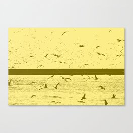Gulls tint Canvas Print