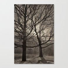 Snow Drifting with Large Trees, Bristol  2013 Canvas Print
