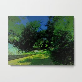 Paths we travel Metal Print
