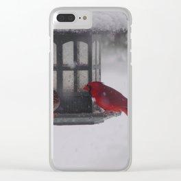 Bird Feeder Clear iPhone Case
