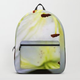 White Easter Lily Close Up Backpack