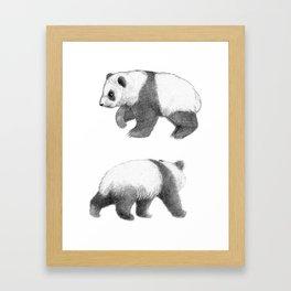 Walking Panda sketch SK062 Framed Art Print