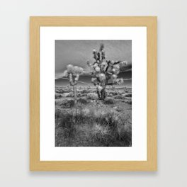 Jericho Framed Art Print