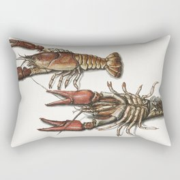Two langoustines (1560-1585) by anonymous Rectangular Pillow
