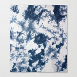 Indigo-go  Canvas Print