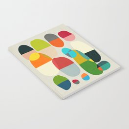 Jagged little pills Notebook