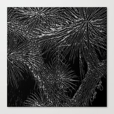 Joshua Tree Silver by CREYES Canvas Print