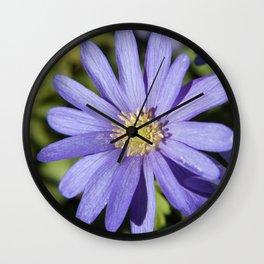 European Daisy Photography Print Wall Clock