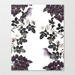 Blackberry Spring Garden - Birds Bees and Flowers Canvas Print