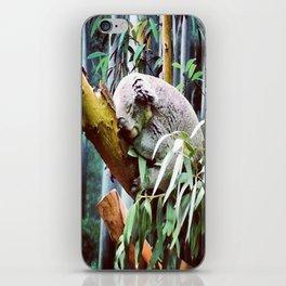 Kozy Koala  iPhone Skin