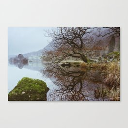 Tree reflections, Rydal Water Canvas Print