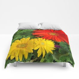 Colorful Daisies Comforters