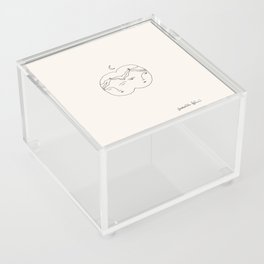 Distracted Acrylic Box