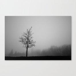 Foggy Silhouettes. Canvas Print
