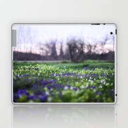 Late Winter Blooms Laptop & iPad Skin