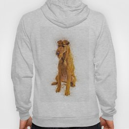 Irish Terrier Hoody