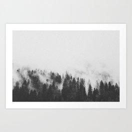 INTO THE WILD XXIV / Oregon Art Print