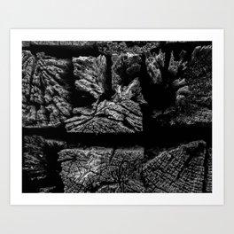 Railroad Ties Art Print