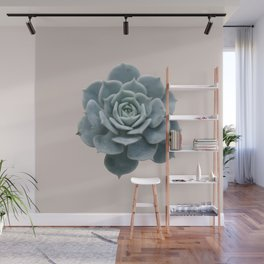 Single Succulent Wall Mural