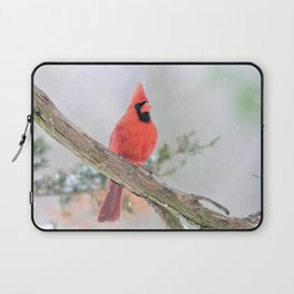 """""""Say What?"""" (Northern Cardinal) Laptop Sleeve"""