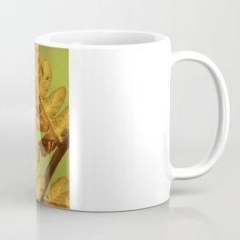 Fall Ferns turning colors with the change of weather Coffee Mug