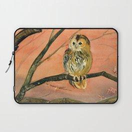 Colorful Owl Art Laptop Sleeve