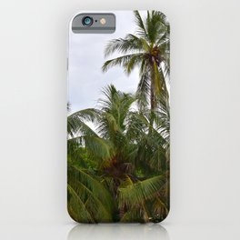 Palm Trees in the Sky iPhone Case