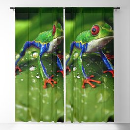 Tree Frog Blackout Curtain