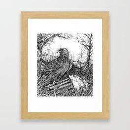 Backyard Hawk Framed Art Print