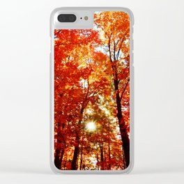 Sun in the Trees Clear iPhone Case