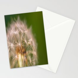 Snowglobe - Macro Photograph of Dandelion Stationery Cards