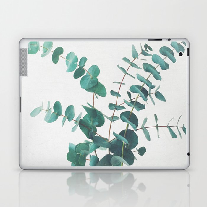 Eucalyptus II Laptop & iPad Skin