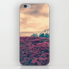 Japanese Mountains iPhone Skin