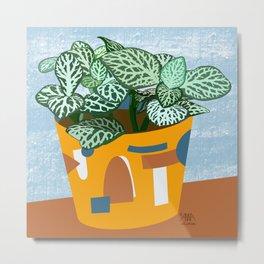 Fittonia Plant Metal Print