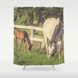 Mare and Foal // Horses Shower Curtain