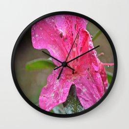 Azalea Sunrise Wall Clock