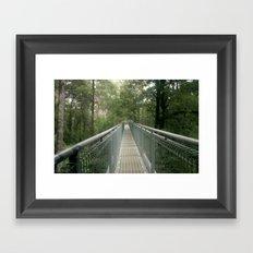 Walk above the forest Floor Framed Art Print