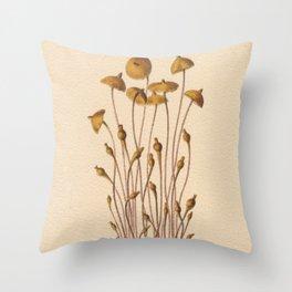 1800s Moss Lithograph Splachnum Luteum Throw Pillow