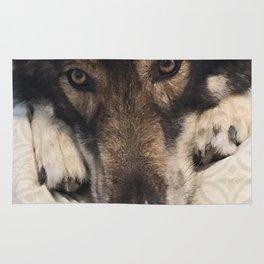 Dog German Shepherd Rug