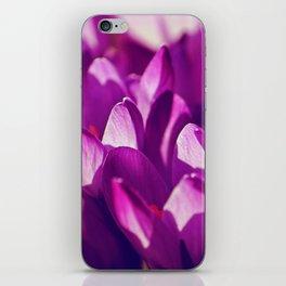 Purple Spring Beauties iPhone Skin