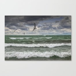 Gulls Flying over the Waves on the Shore in Sturgeon Bay Canvas Print