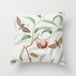 Vintage Botanical Print - Peach and Moths Throw Pillow