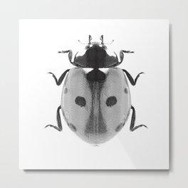Lady Bird Metal Print