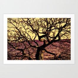 raices Art Print