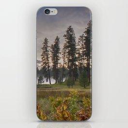 Walton Lake iPhone Skin
