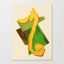 Natural Balance - The Seahorse Canvas Print